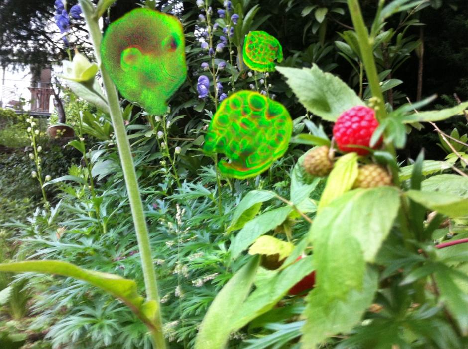 electric_garden_02