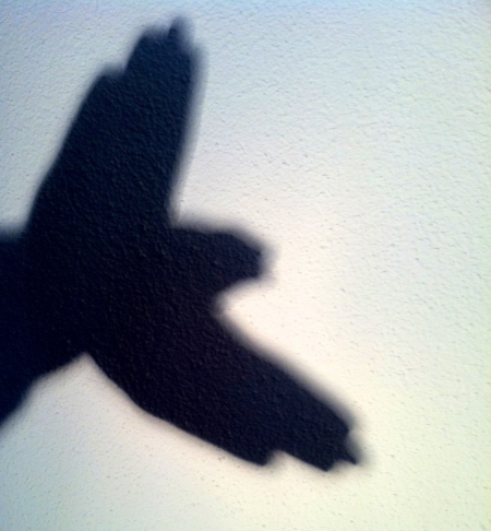Hand_shadow_bird